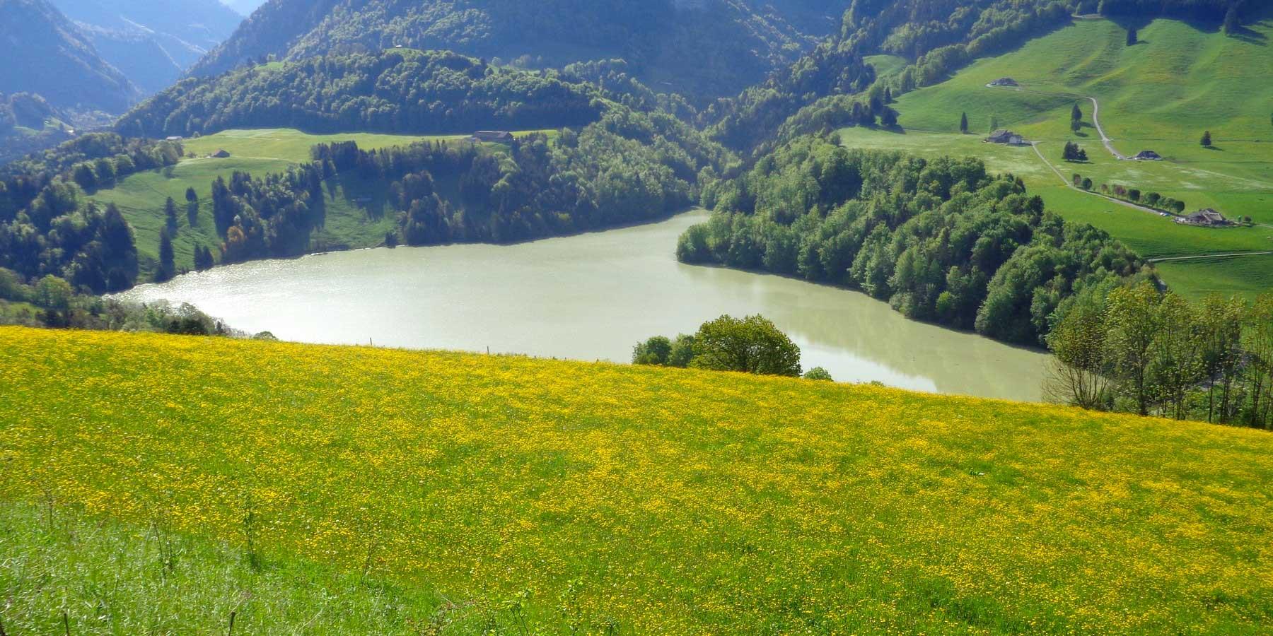 Montsalvens lac